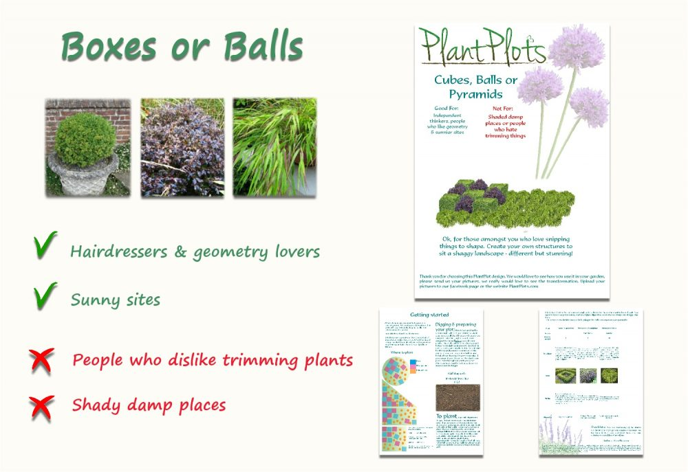 Garden Border Planting Design Plan foliage for topiary lovers