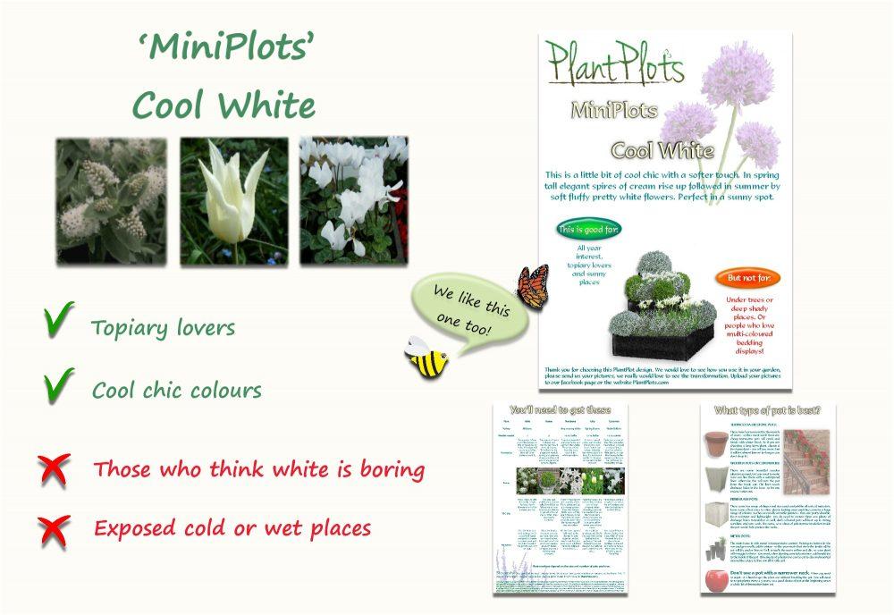 Garden Border Planting Design Plan white themed flowers sunny spot