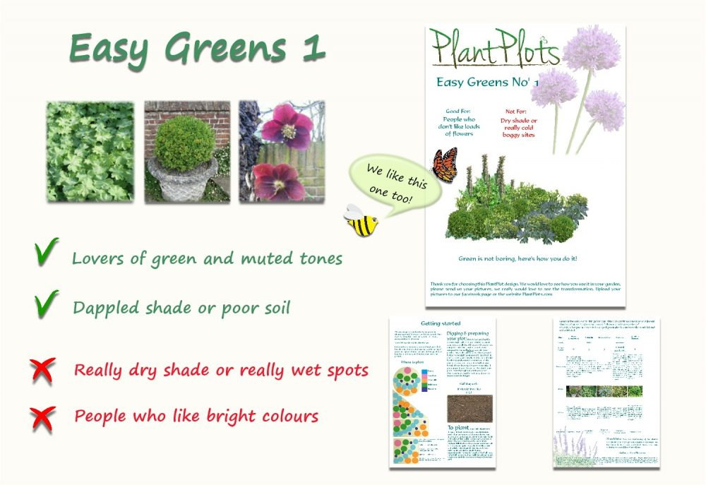 Garden Border Planting Design Plan easy care planting winter colour