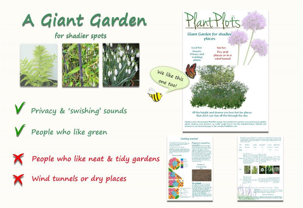 Garden Border Planting Design Plan tall planting sheltered spot