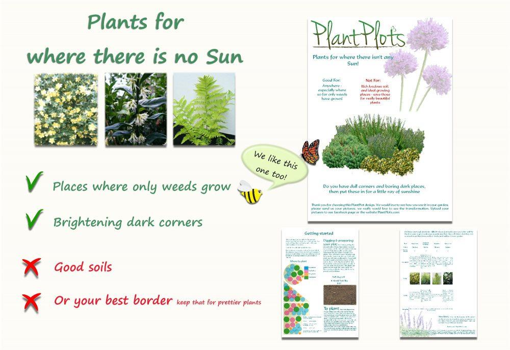 Garden Border Planting Design Plan flowers in deep shade
