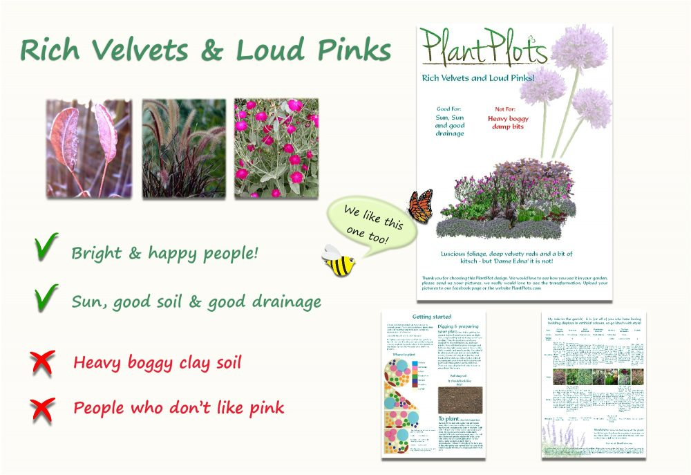 Garden Border Planting Design Plan tall big plants in purple and pink