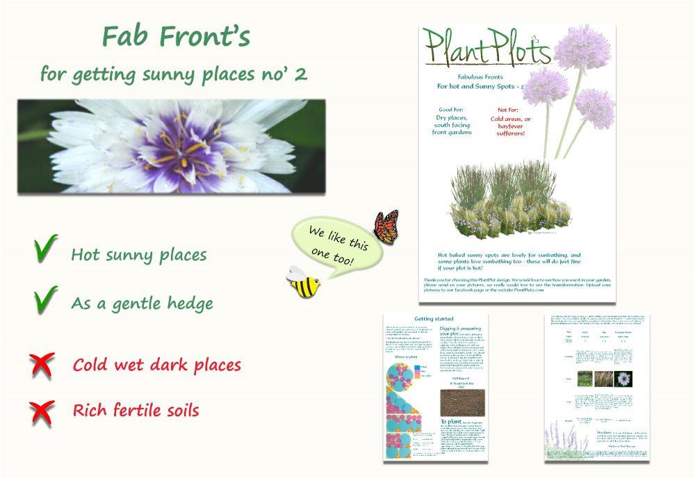 Garden Border Planting Design Plan easy care tall planting neutral colours