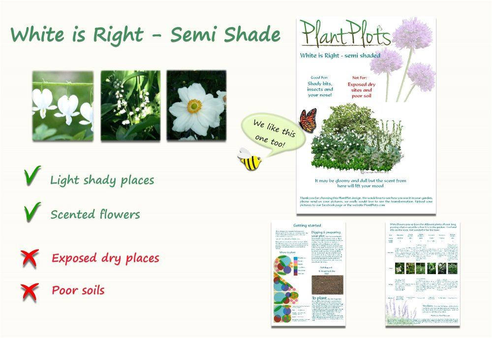 Garden Border Planting Design Plan white flowers for semi shade