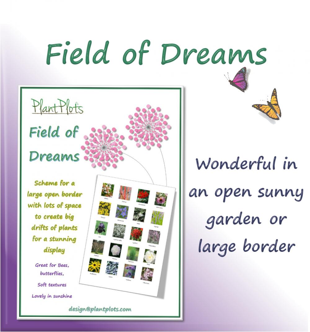 border design ideas garden design product