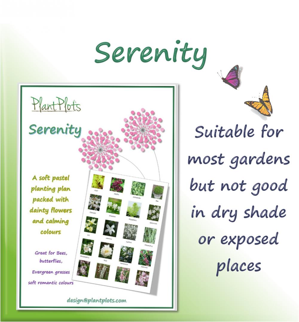 pastel flowers planting scheme garden design product