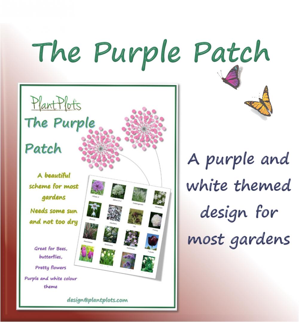 border planting ideas garden design product