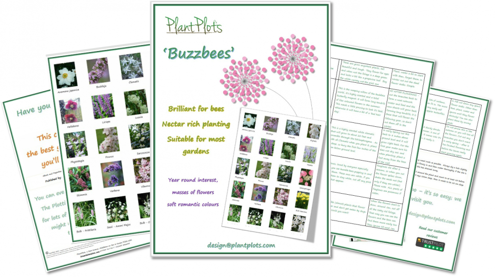 style sheets showing planting ideas for a garden